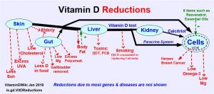 Reductions in Vitamin D is.gd/VitDReductions